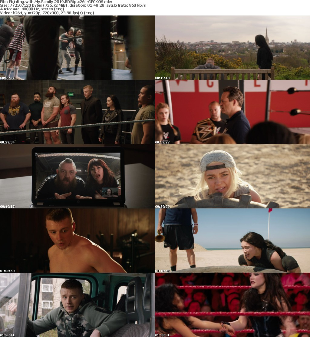 Fighting with My Family (2019) BDRip x264-GECKOS