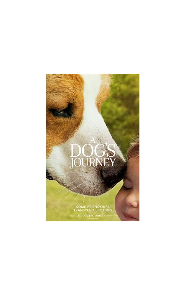 A Dogs Journey 2019 720p HDCAM-H264 AC3 ADDS CUT OUT Will1869