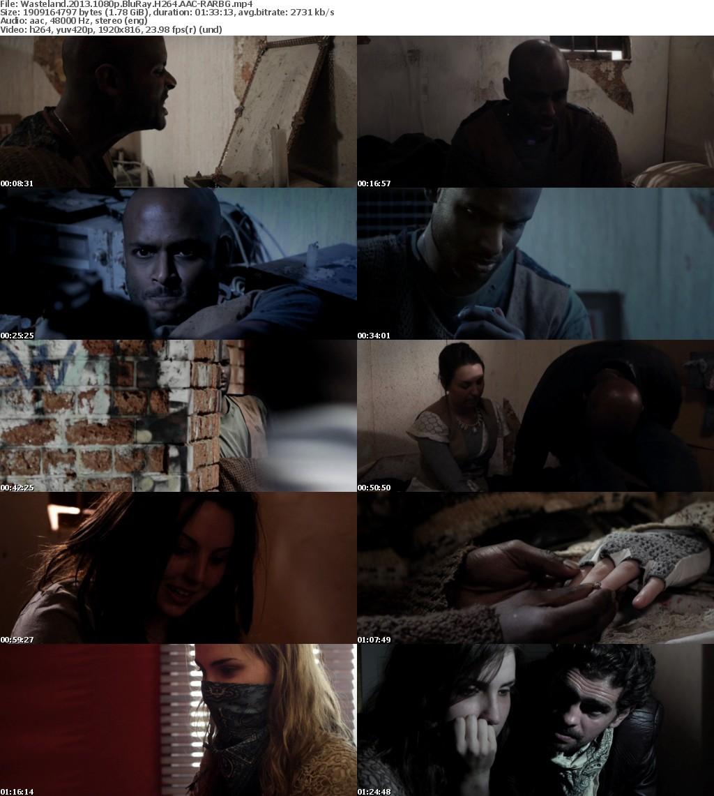 Wasteland (2013) 1080p BluRay H264 AAC-RARBG