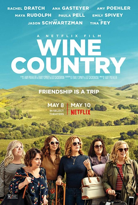 Wine Country 2019 WEBRip XviD AC3-FGT