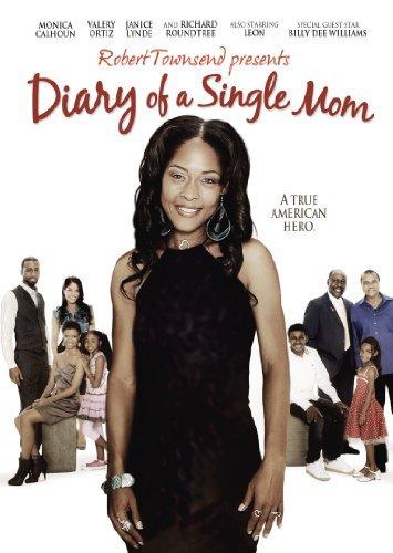 Diary of a Single Mom (2009) WEB h264-CRiMSONrarbg