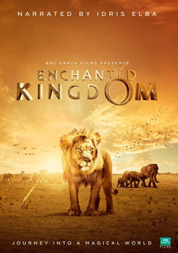 Enchanted Kingdom 2014 1080p BluRay H264 AAC-RARBG