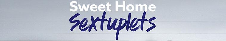 Sweet Home Sextuplets S02E08 Web of Destruction 720p HDTV x264 CRiMSON