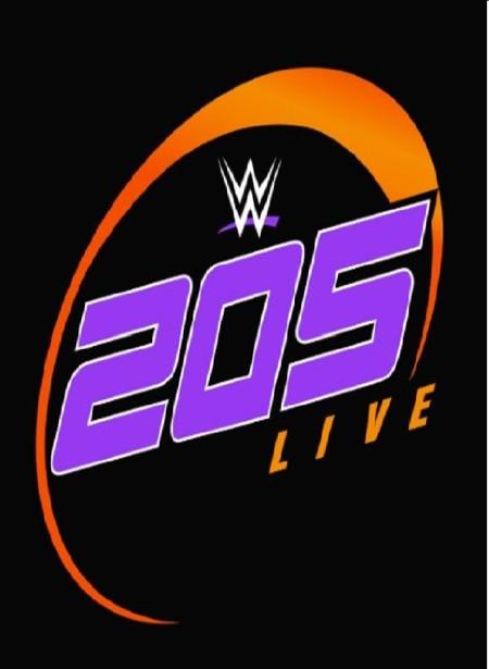 WWE 205 Live 2020 02 14 720p WEB x264-PFa