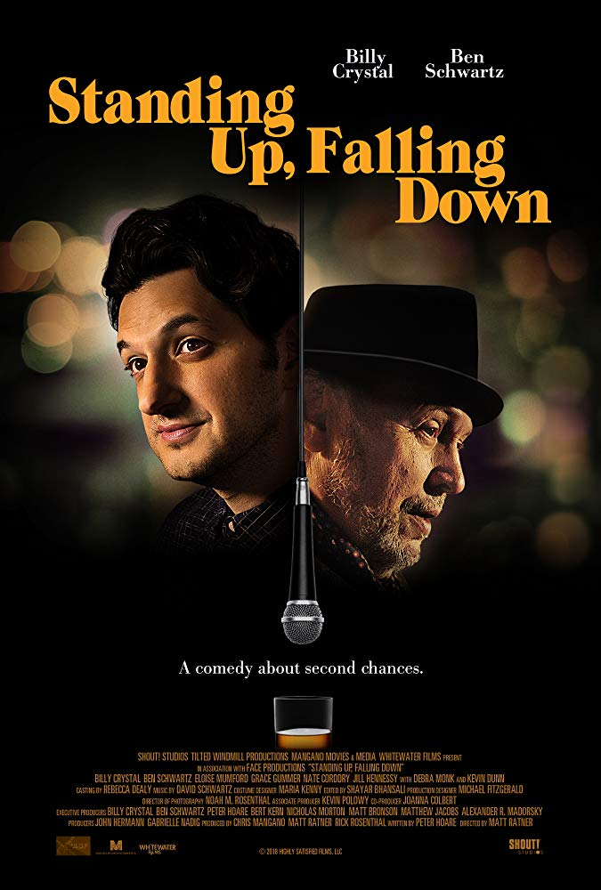 Standing Up Falling Down 2019 1080p WEB-DL H264 AC3-EVO[EtHD]