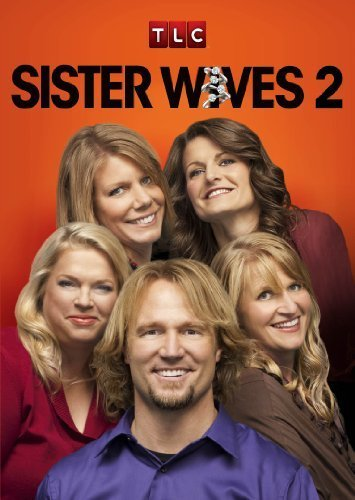 Sister Wives S14E13 The Heat is On 480p x264-mSD
