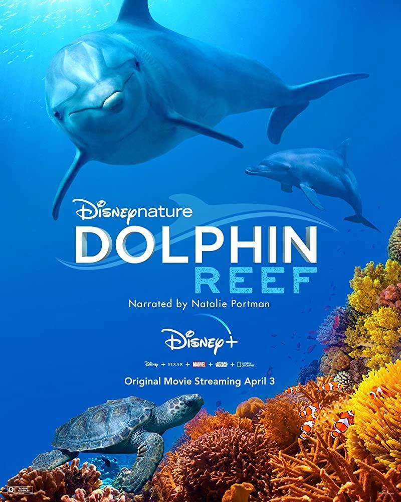 Dolphin Reef 2020 [720p] [BluRay] YIFY