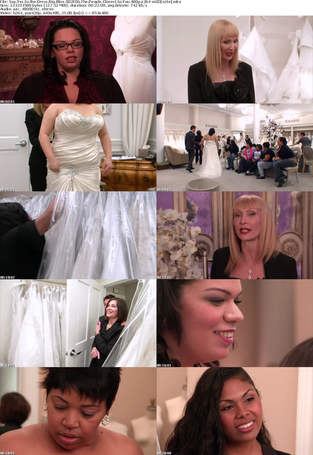 Say Yes to the Dress Big Bliss S02E06 The People Closest to You 480p x264-mSD
