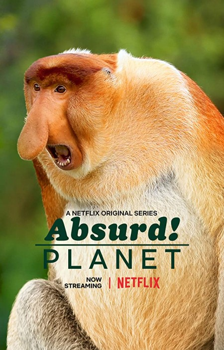Absurd Planet S01E11 480p x264-mSD