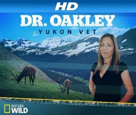 Dr Oakley Yukon Vet S08E06 I Quill Survive 480p x264-mSD