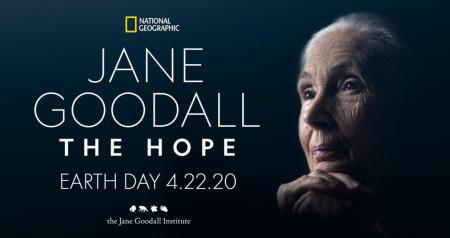 Jane Goodall The Hope 2020 iNTERNAL WEBRip x264-CAFFEiNE
