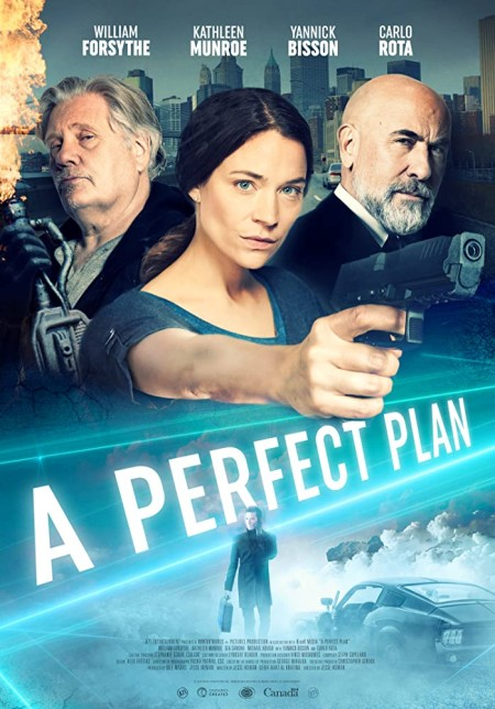 A Perfect Plan 2020 720p WEBRip 800MB x264-GalaxyRG