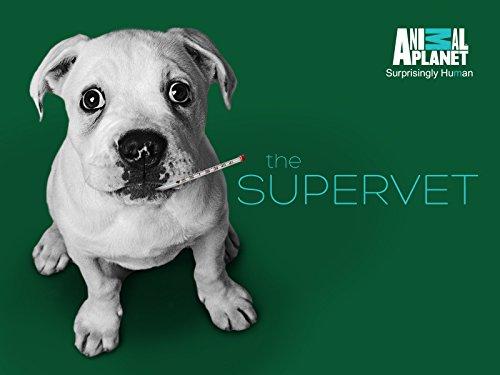 The Supervet S09E04 720p HDTV x264-CBFM