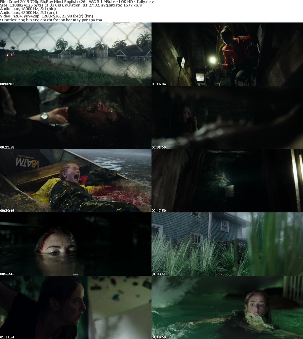 Crawl (2019) 720p BluRay Hindi English x264 AAC 5.1 MSubs - LOKiHD - Telly