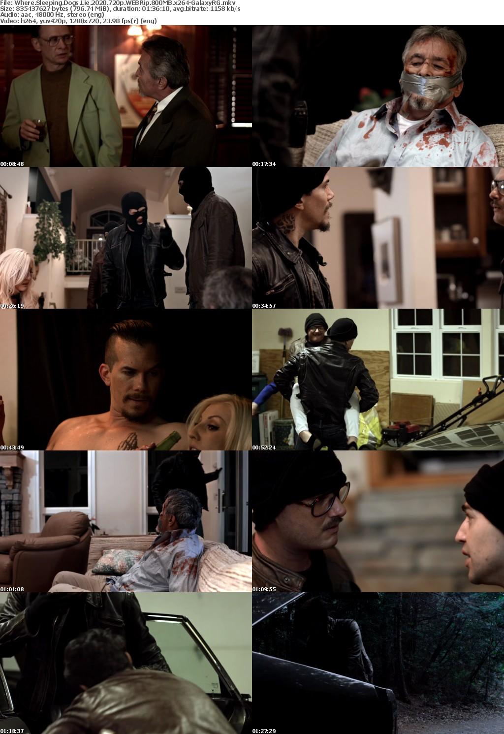 Where Sleeping Dogs Lie (2020) 720p WEBRip 800MB x264-GalaxyRG
