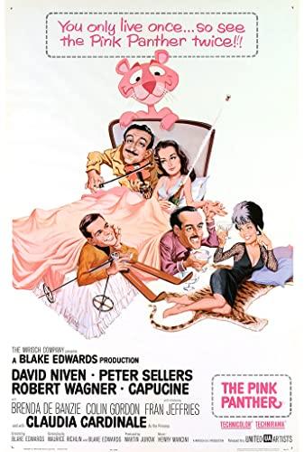 Pink Panther 1963 1080p BluRay x265-RARBG