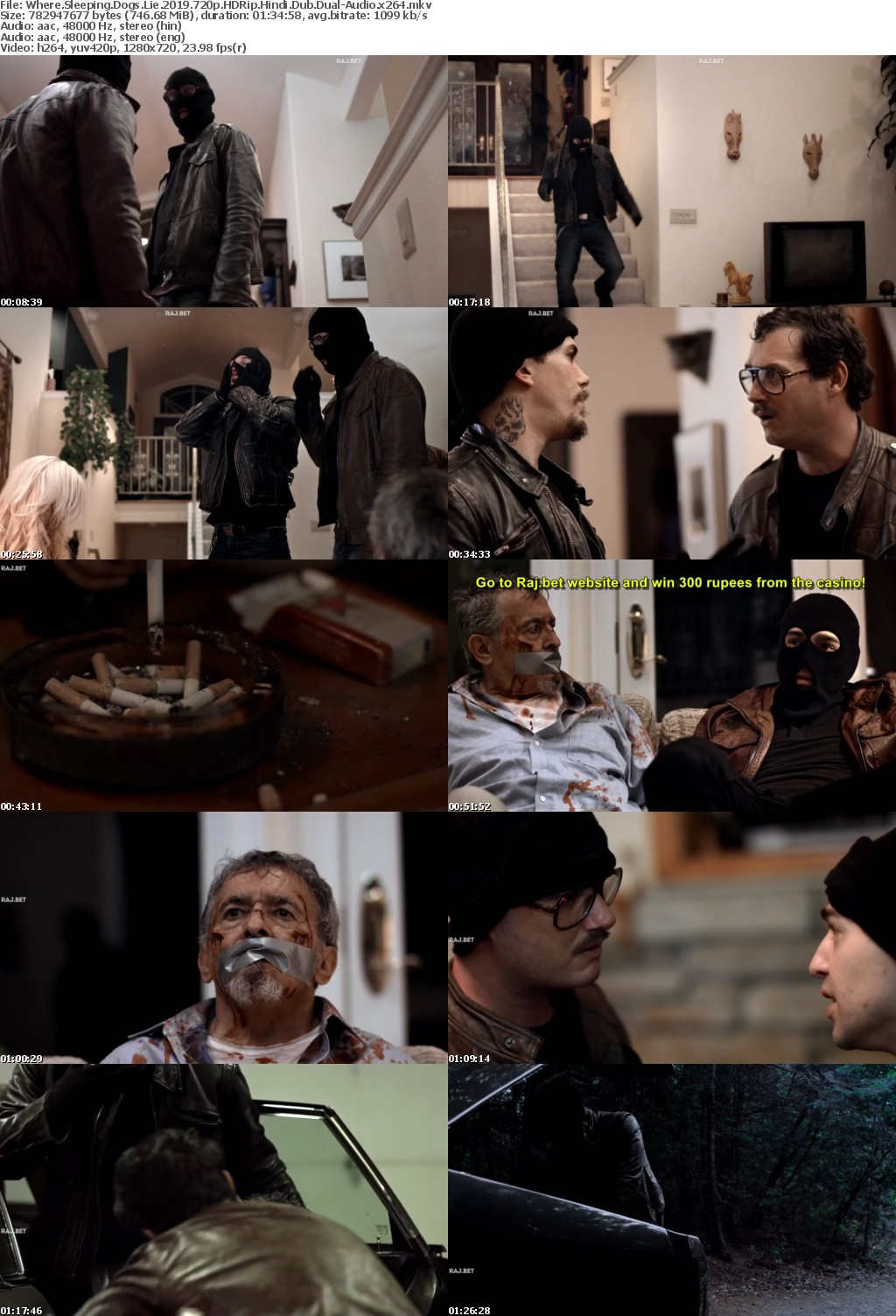 Where Sleeping Dogs Lie (2019) 720p HDRip Hindi-Dub Dual-Audio x264