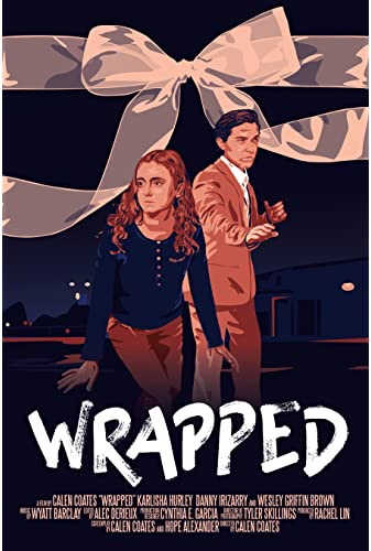 Wrapped 2019 WEBRip x264-ION10