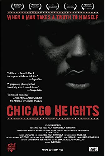 Chicago Heights 2009 WEBRip x264-ION10
